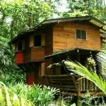 Bungalov evler